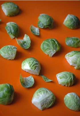 brussel sprouts vertical